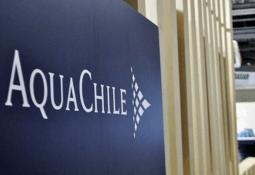 AquaChile publica Reporte de Sustentabilidad 2019