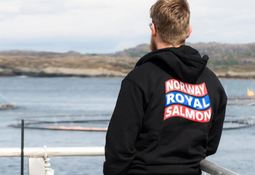 Volume and earnings down for Norway Royal Salmon