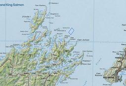 Nueva Zelanda: Buscan operar primer centro de cultivo off shore de salmón