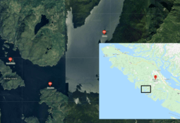 130,000 morts collected at algae-hit Cermaq sites