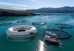 Salmon farmer loses 'UFO' development permit