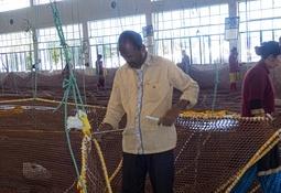 Havfarm's 11-tonne nets take shape in India