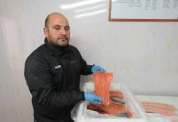 Modernizarán única sala de ventas que distribuye salmón en todo Aysén