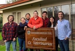 Prestigioso ranking destaca a la UACh en el ámbito de las Ciencias Veterinarias