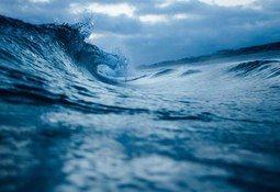 Científicos proponen crear Sistema Integrado de Observación del Océano Chileno