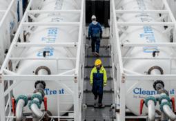 Benchmark no traerá a Chile tratamiento contra parásitos del salmón