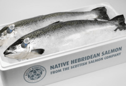 Four-star rating is a European first for Scottish Salmon Company