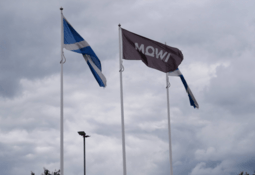 Mowi harvests more salmon but makes less money in Q4
