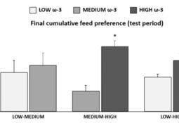 Estudio: Trucha prefiere alimentos ricos en omega-3