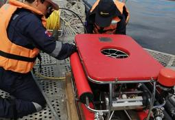 Sernapesca denuncia a Salmones Antártica por mal manejo de mortalidad