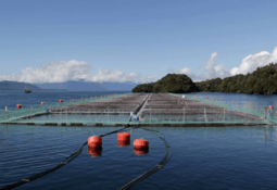 Aquaculture wins bigger slice of research cake