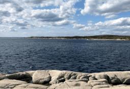 Nova Scotia: Gold standard for aquaculture