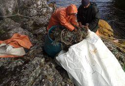 Las principales brechas en la gestión de residuos salmonicultores