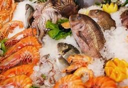 Consumidores de productos del mar piden un cambio