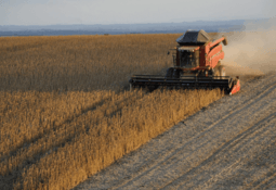 Aller Aqua phasing out South American soy in Europe