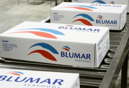 Blumar plunges from profit to loss in first half of 2020