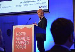 Planean construir primer centro de salmón en mar abierto para Escocia