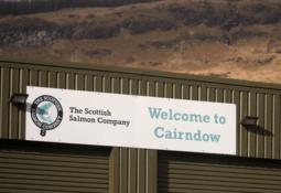 Bakkafrost to ramp up SSC processing capacity