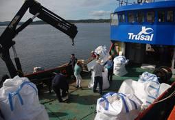 Salmones Austral y comunidad recolectan 30 toneladas de desechos