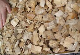 Evalúan uso de madera y arena para proceso de desnitrificación en RAS