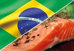 Por Covid-19: Exportaciones seafood a Brasil contarán con certificación en línea