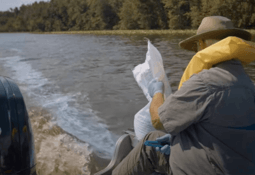 Is this the technology to beat algal blooms?