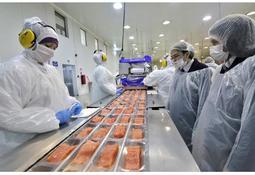 Nova Austral busca duplicar capacidad de proceso en planta de Porvenir