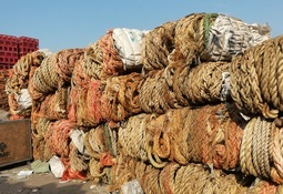 Cadena de reciclaje de residuos salmonicultores continúa pese a la emergencia sanitaria