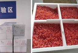 Egg supplier ova-comes coronavirus logistics hurdle