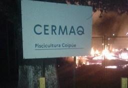 Investigan ataque incendiario contra oficinas de Cermaq Chile