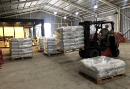 Productor chileno de harina de insectos crece en la industria del salmón