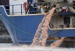 Canadá: Salmonicultora recupera licencias de cultivo tras episodio de mortalidad masiva