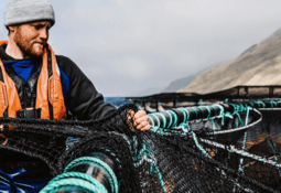 Good growth and fish health for Scottish Sea Farms