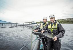 OptoScale lanserer fjernovervåking og analyse av fiskehelse i sanntid