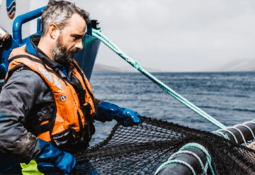 Salmon farmers invited to have their say on fish welfare