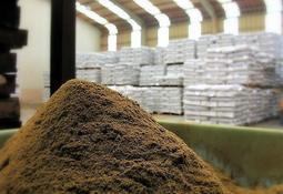 eFIFO: Salmonicultura produciría la misma biomasa que consume