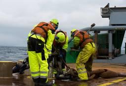 - Forflytning av sjøfolk må stå øverst på prioriteringslisten