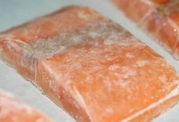 Fish farmers given £1.25m aid to freeze stock