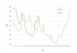 Big fall in salmon price mirrors 2019 plunge