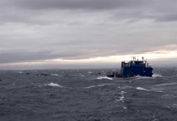 Temporal afecta a centro de Blumar y Sernapesca confirma escape de peces