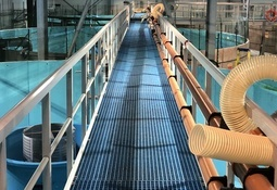 Hear how smolt research will aid production