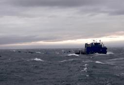 Mass escape in Chile as storm wrecks farm