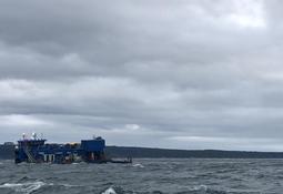 Blumar inicia recaptura de salmones y SMA ordena medidas urgentes y transitorias