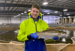 GM pioneer marks milestone with conventional salmon