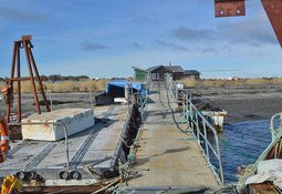 Magallanes: SMA formula cargos contra proyecto de salmones y mitílidos