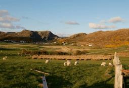 Loch Duart and Cargill fund Scourie broadband boost