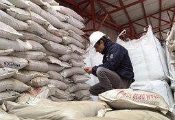 Corte Suprema condena a Salmones de Chile por venta de harina de pescado ilegal