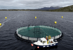 Irish fish farmers praised for respect for the rules