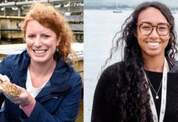 Understanding hormones to improve oyster production