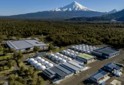 Las acciones de Camanchaca para alcanzar la carbono neutralidad